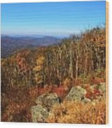 Colors Of Autumn In Shenandoah National Park Wood Print