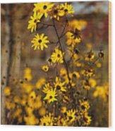 Colors Of Autumn Wood Print by Sabrina L Ryan