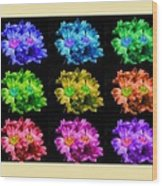 Colors Of Cactuses Wood Print