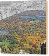 Colors Of Central Park Wood Print