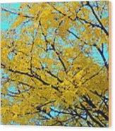 Colors Of Fall 1 Wood Print