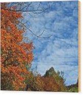 Colors Of Fall 2 Wood Print