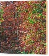 Colors Of Fall 4 Wood Print