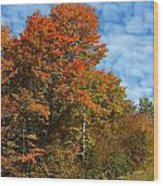 Colors Of Fall 4 Wood Print