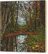Colors Of Fall Wood Print