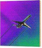 Colors Of Flight Wood Print
