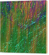 Colors Of Grass Wood Print