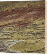 Colors Of Painted Hills Wood Print