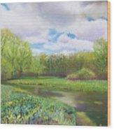 Colors Of Spring At Millbrook Marsh Wood Print