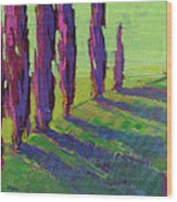 Colors Of Summer 1 Wood Print