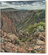 Colors Of The Black Canyon Wood Print