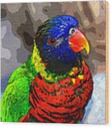 Colors Of The Lorikeet Wood Print