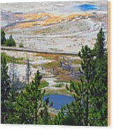 Colors Of Yellowstone Wood Print