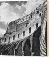 Colosseo Wood Print