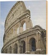 Colosseum Rome, Italy Wood Print by Allyson Scott