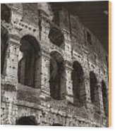 Colosseum Wall Wood Print