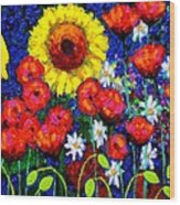 Colour Cluster Wood Print