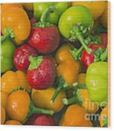 Colourful Mini Bell Peppers Wood Print