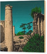 Colourful Ruins Wood Print