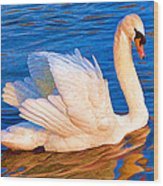 Colourful Swan Wood Print
