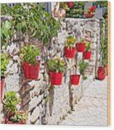 Colourful Flower Pots Wood Print