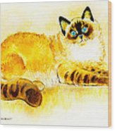 Colourpoint Cat Wood Print
