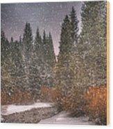 Colours Of Winter Wood Print by Juli Scalzi