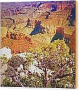 Colours Within The Canyon Wood Print by Tara Turner