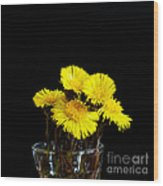 Coltsfoot Bouquet Wood Print