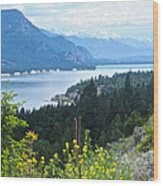 Columbia Lake Which Is Source Of The Columbia River-bc  Wood Print
