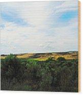 Columbia National Widlife Refuge Wood Print