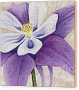 Columbine In Violet Wood Print by Vikki Wicks