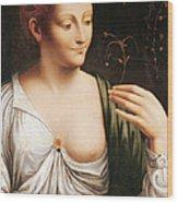 Columbine Wood Print by Leonardo da Vinci