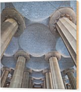 Columns And Domes Of Hypostyle Room In Park Guell Wood Print