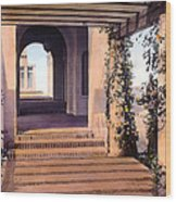 Columns And Flowers Wood Print by Terry Reynoldson