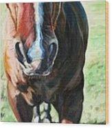 Comanche's Hello Wood Print