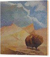 Comfort 2 Wood Print by William Killen