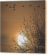 Coming Home In The Spring Wood Print by Bob Orsillo