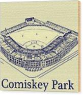 Comiskey Park 1910 Wood Print