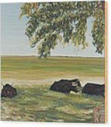 Commanche National Grasslands La Junta Colorado Wood Print