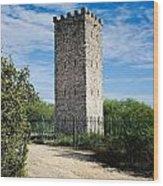 Commanche Park Tower Wood Print