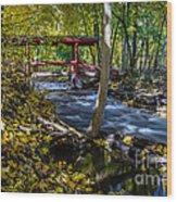 Commerce Twp. Mill Race Park Wood Print