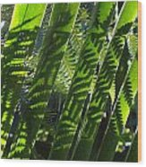Common Beauty Wood Print