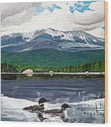 Common Loon On Togue Pond By Mount Katahdin Wood Print
