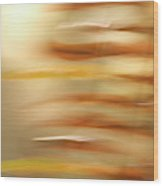 Common Sword Ferns, Polystichum Wood Print