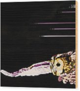 Companion To The Wind Wood Print