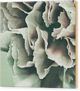 Complimentary Wood Print