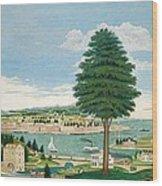 Composite Harbor Scene With Castle Wood Print