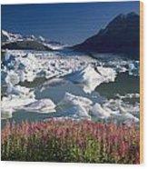 Composite View Of Colony Glacier W Wood Print