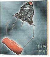 Conceptual Image Of A Nanobot Injecting Wood Print